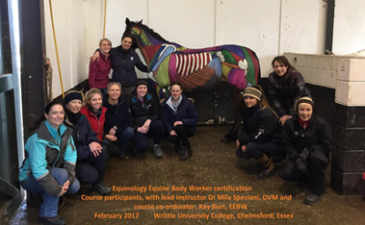Sam Jamieson Equine Energy Bodywork certification course